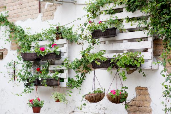 Euro-Palette als vertikaler Garten