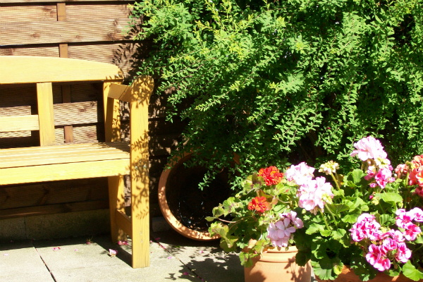 Terrassengarten mit Pflanzkuebeln