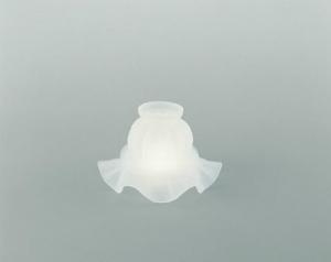Glasschirm 06gs Grau Satiniert